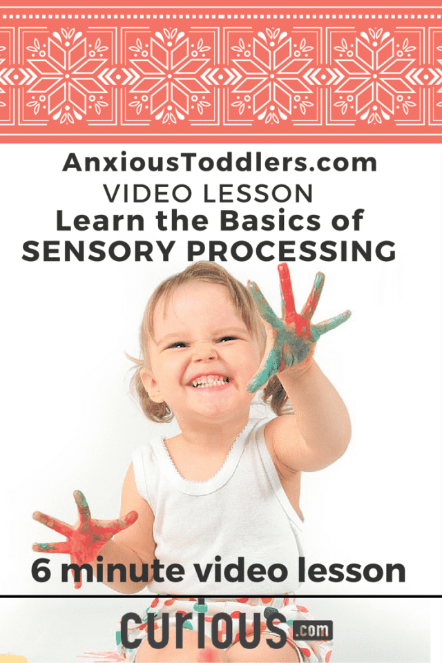 Take this short 6 minute video lesson and learn the basics of sensory processing.