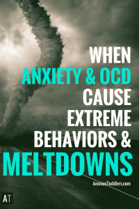 Some poor behavior and meltdowns aren't normal. They are a 7.5 on the Richter scale. Anxiety can cause the perfect storm. Let me teach you how to ride it out.