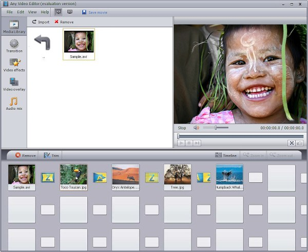 Any Video Editor – Video Editing Software, Edit Video ...