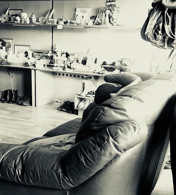 sofa display in charity shop