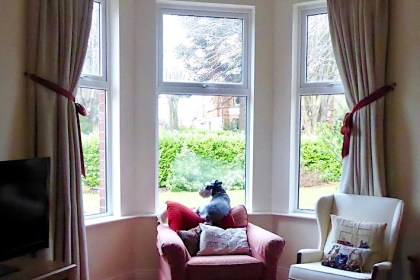 minster's manse with dog in window