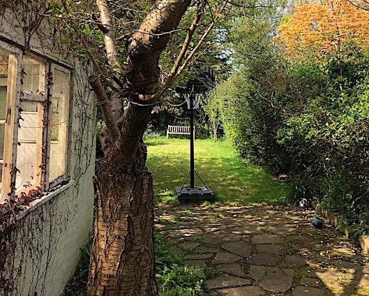garden with basketball net, London