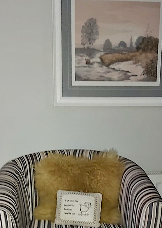 soft chair with cushion and picture