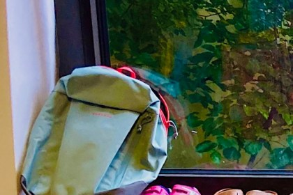 bag and shoes in window