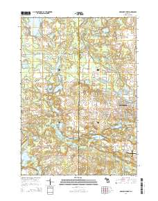 Baldwin Lake Beach Topo Map in Montcalm County, Michigan