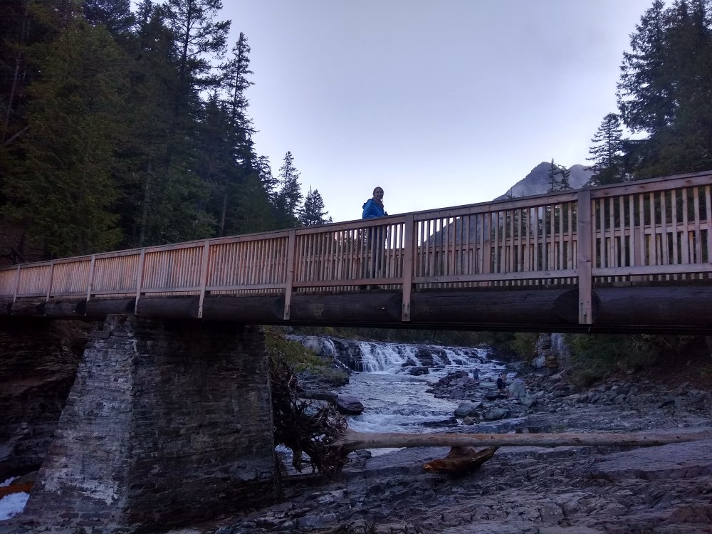 Bridge at McDonald Falls