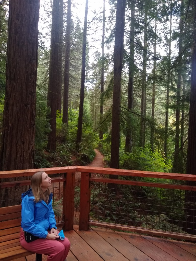 Redwood deck at Hoyt Arboretum