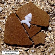 Projectile point and pottery sherds