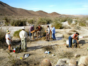 Archaeology field work