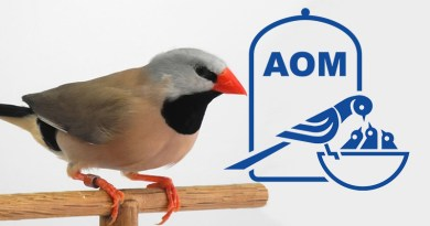 8 Mostra Ornitologica 2000