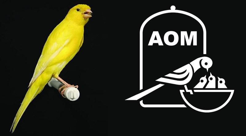 14 Mostra Ornitologica 2008