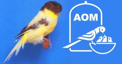 23° Mostra Ornitologica 2018