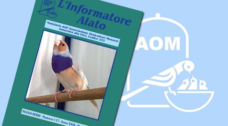 Informatore Alato 2020 - N 117