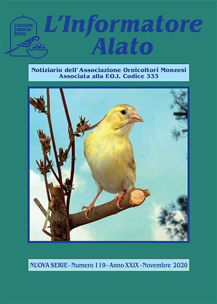 Informatore Alato 2020 - N 119