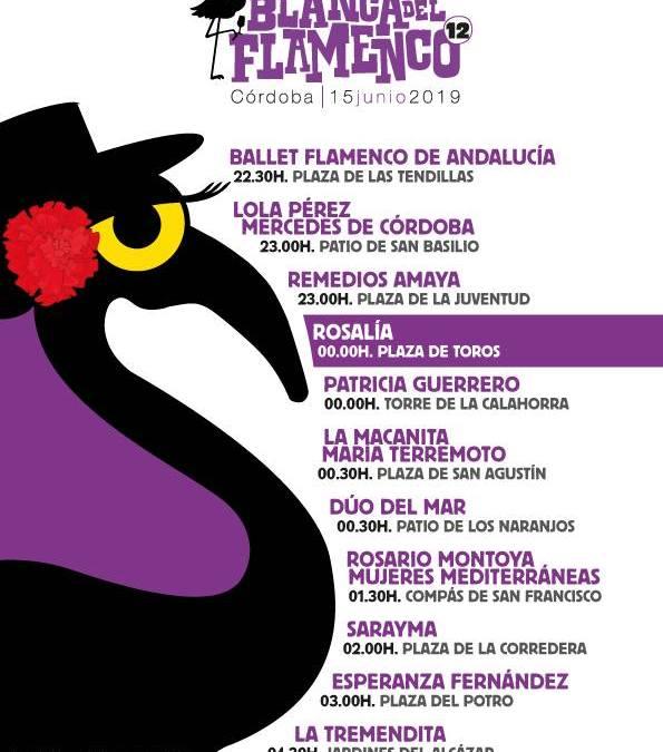 ✩ La Noche Blanca del Flamenco Córdoba ✩