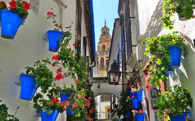 ¿Sabías que… La calleja de las flores?