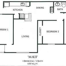11710-briar-forest-dr-floor-plan-maui-1025-sqft