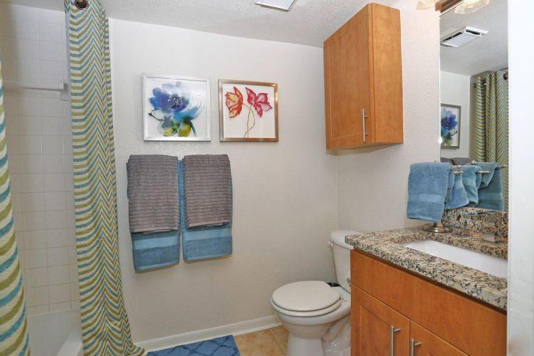 Apartments At Island Walk By Cortland Tampa