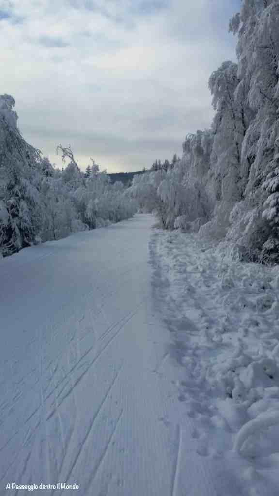 pista-sci-di-fondo-val-di-casies-inverno