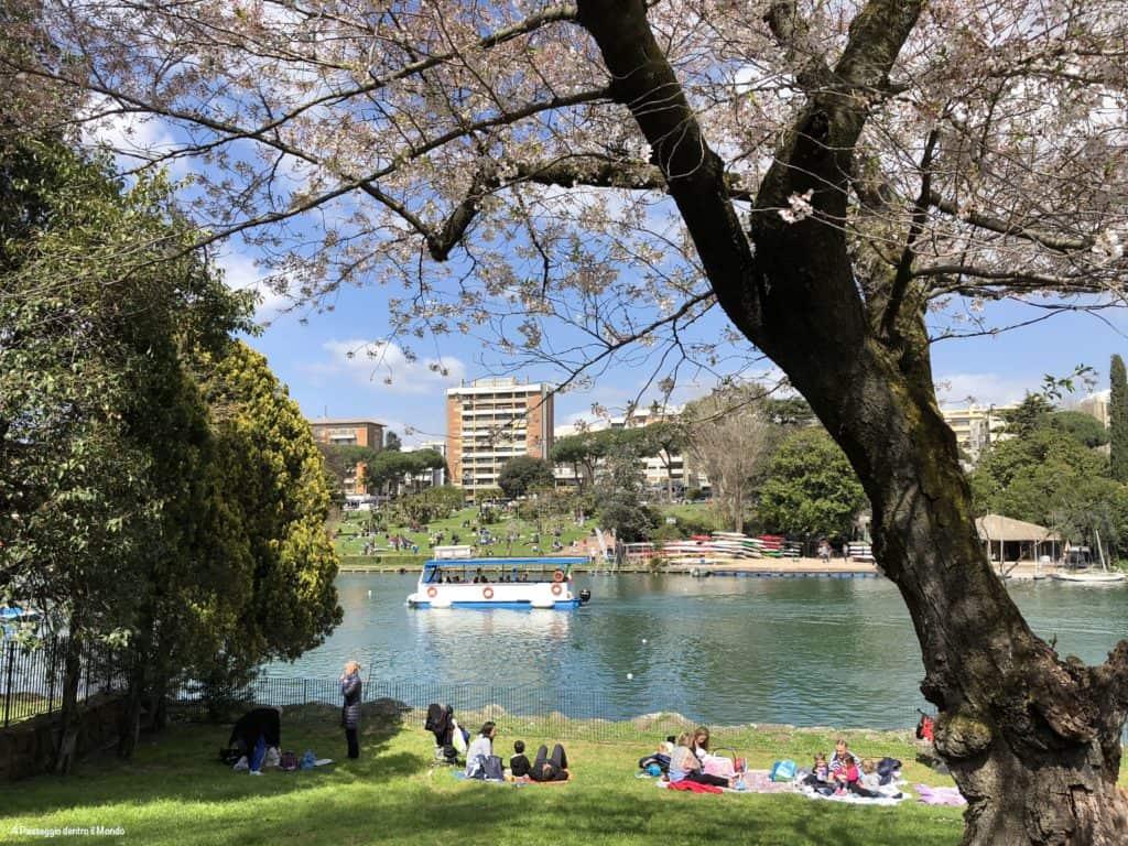Battello al laghetto dell'Eur per la fioritura dei ciliegi