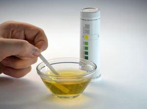 fake urine
