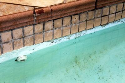 pool tile cleaning in monroe ga pool