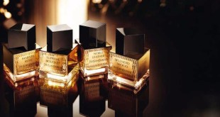 عطر نوبل ليذر إيف سان لوران Noble Leather Yves Saint Laurent