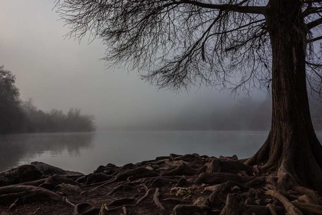 Foggy Morning at Red Bud Isle in Austin, Texas