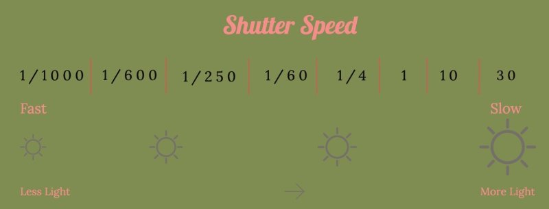 Shutter Speed Graphic shows how the faster the shutter speed the less light that reaches the sensor