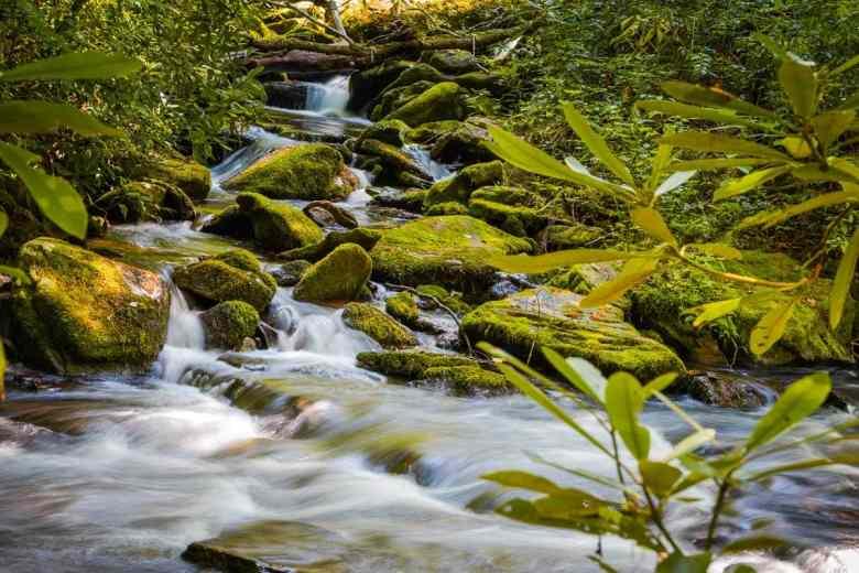 Small waterfall on Boogerman Trail in Catalooche Valley, North Carolina