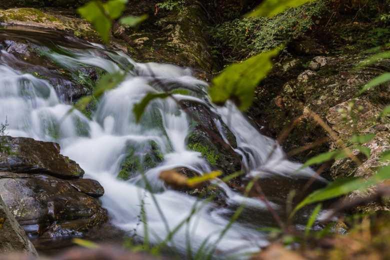 Small flowing falls of Laurel Creek