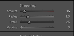 Sharpening in the detail panel - lightroom