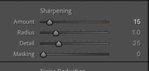 Sharpening in the detail panel - lightroom