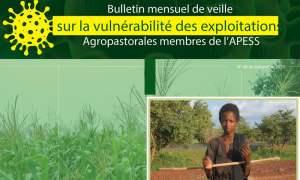 8ème Bulletin mensuel de veille sur la vulnérabilité des exploitations agropastorales membres de l'APESS.