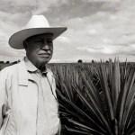 Consumo de tequila aumenta en el país