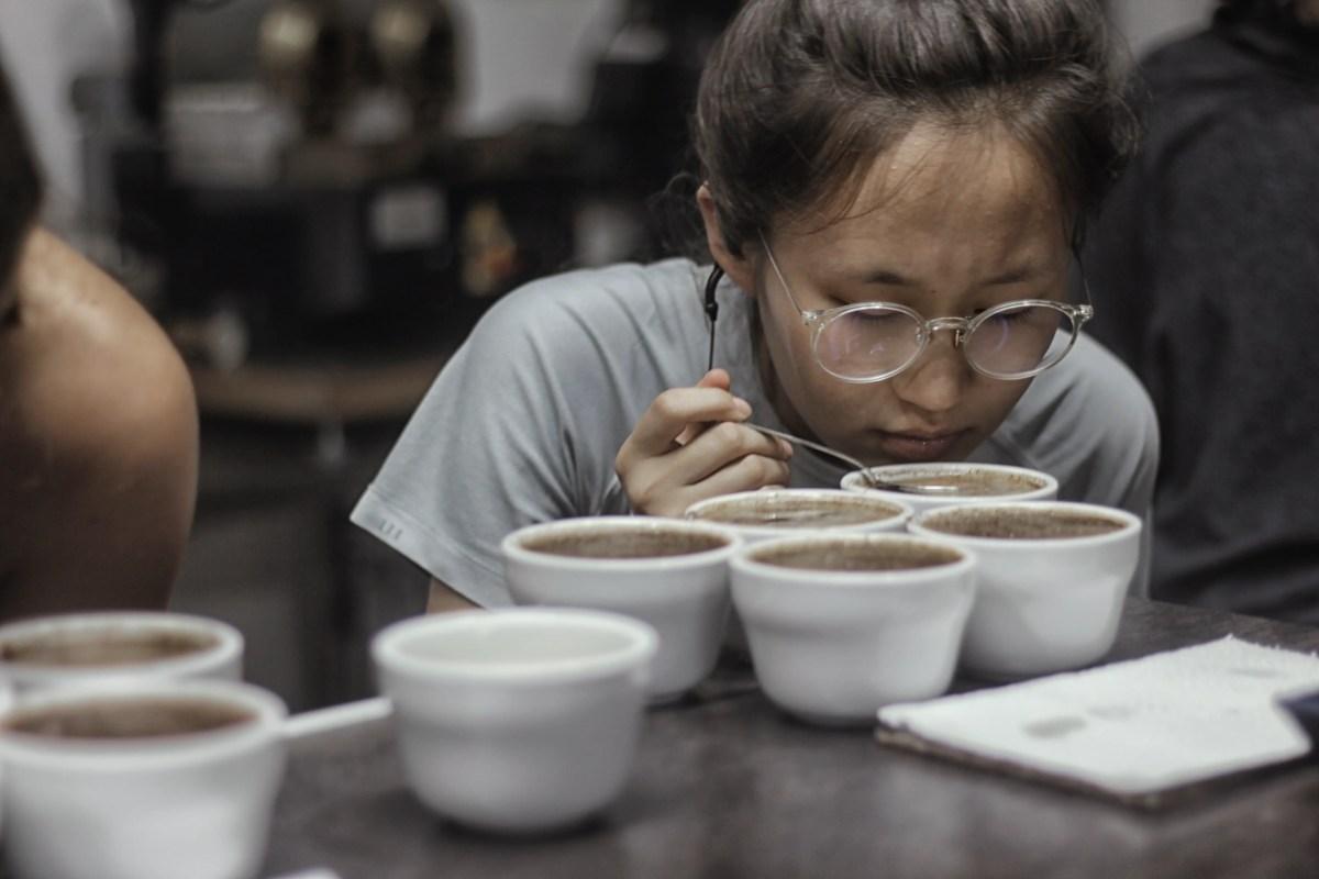 Fiesta de apertura de cosecha de café