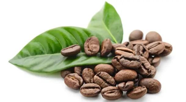 https://i1.wp.com/www.apetitoenlinea.com/wp-content/uploads/2018/11/large_article_im327_coffee.jpg?resize=610%2C335&ssl=1