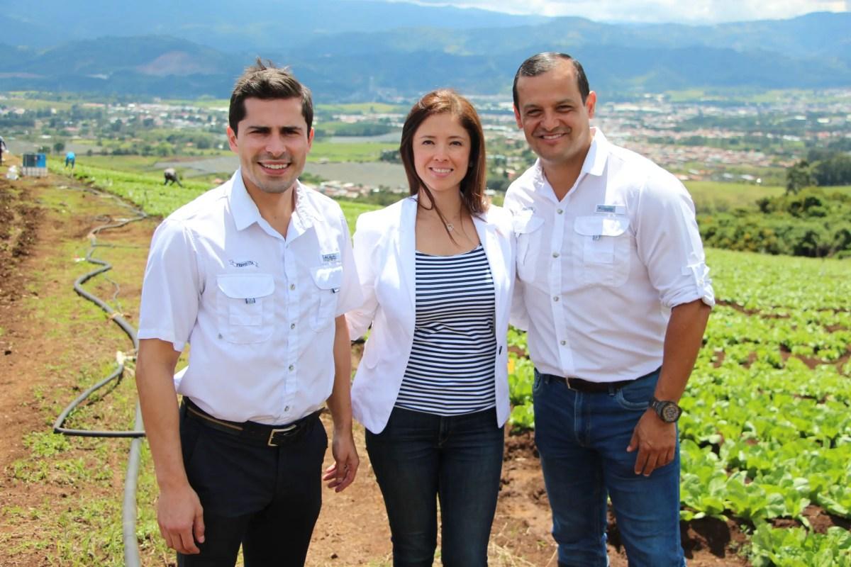 Vegetales Fresquita aumenta su producción para satisfacer demanda de McDonald's en el país