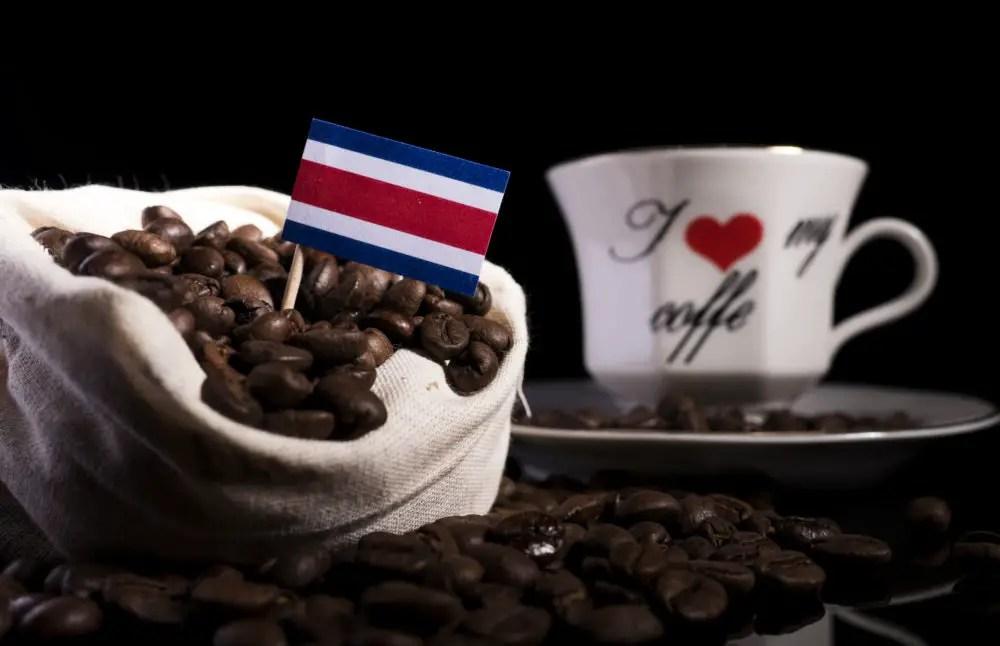 22% del café de Costa Rica es bajo en emisiones y se produce de manera sostenible