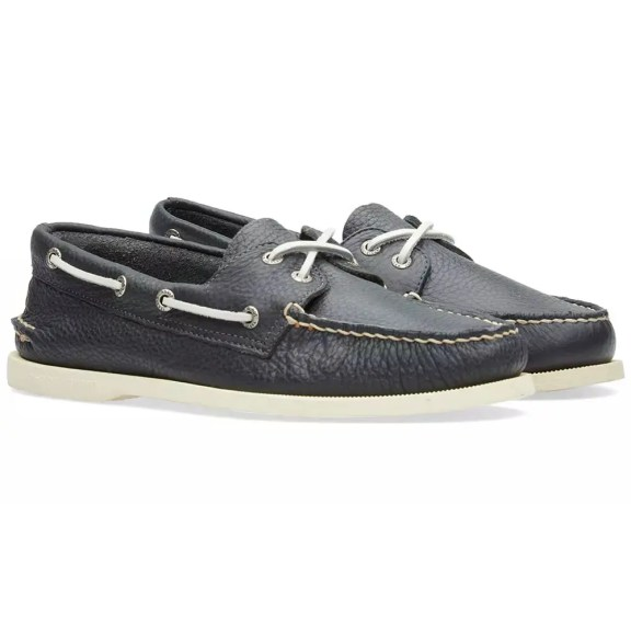 sperry-1