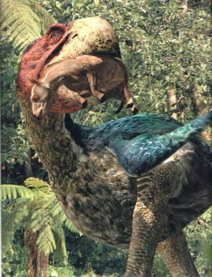Scientist Discover New Fossil of so far Unknown Species of Terror Bird