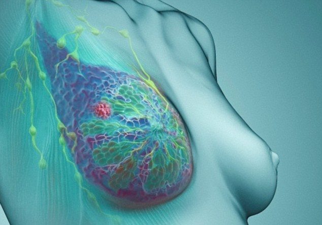 """First Lab-Grown Breast Sheds Light on Cancer Cell Progression"""