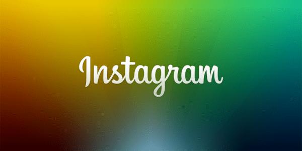 """""""instagram web search bar"""""""
