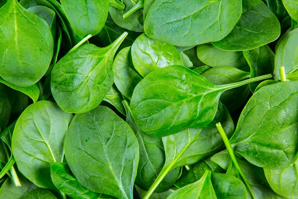 Some spinach leaves