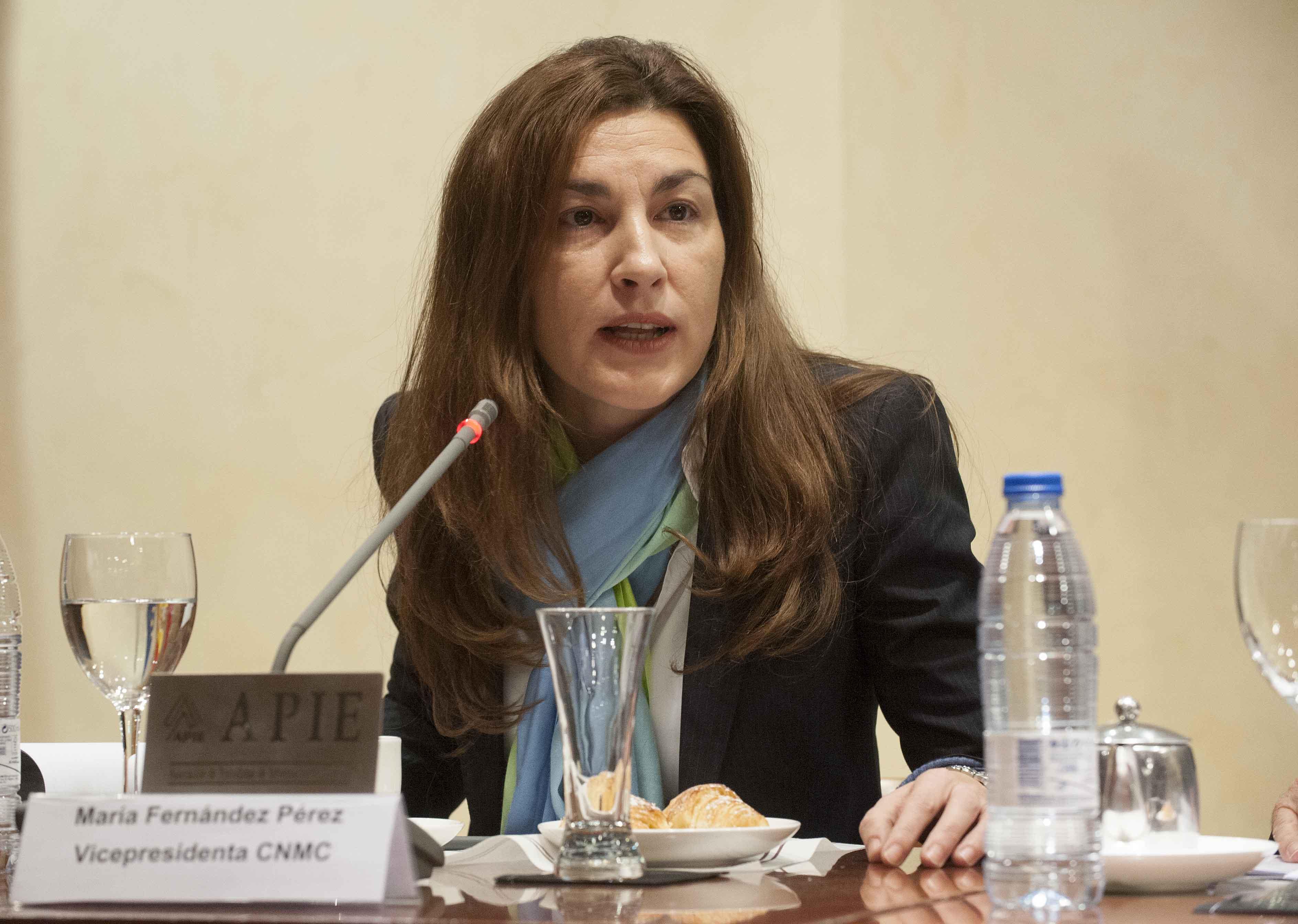 María Fernández Pérez, Vicepresidenta de la CNMC, durante el desayuno de prensa organizado por APIE.
