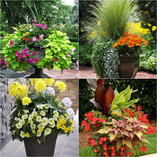 24 Stunning Container Garden Planting Designs - A Piece Of ... on Tree Planting Ideas For Backyard id=78259