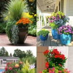24 Stunning Container Garden Planting Ideas A Piece Of Rainbow