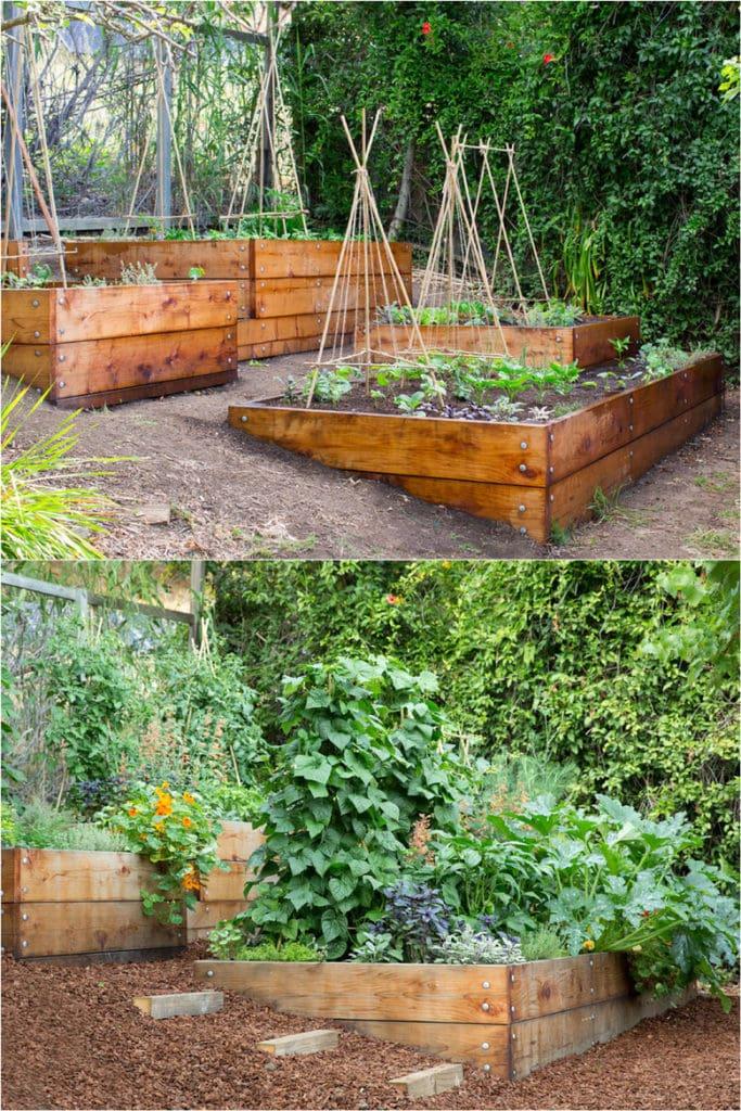 Vegetable Garden Layout: 7 Best Design Secrets! - A Piece ... on Vegetable Garden Ideas For Backyard id=93023