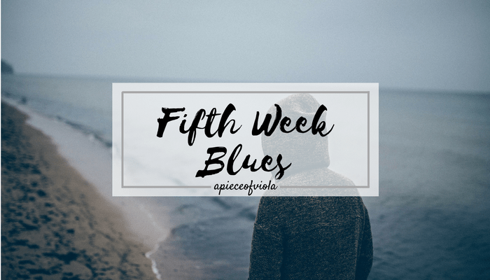 Fifth Week Blues | Uni Diaries