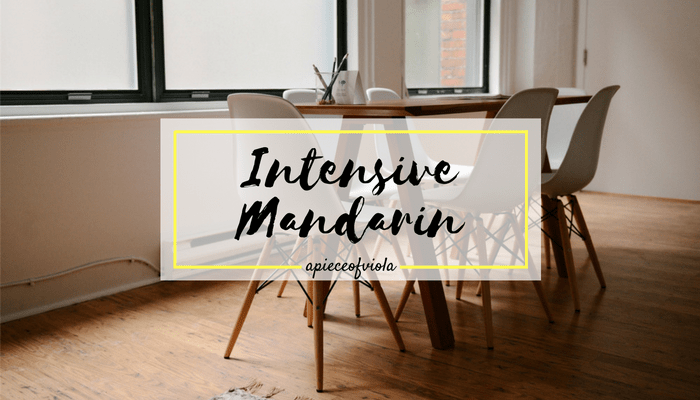 Learning Mandarin intensively | My Experience